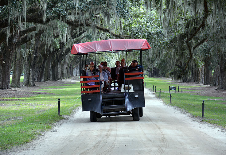 Riding the trolley under live oaks at Boone Hall Plantation, Mt. Pleasant, SC
